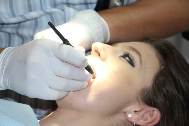 歯髄から幹細胞